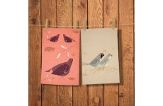 MAGPIE TEA TOWELS 1 QUAIL & 1 GROUSE IN PACK
